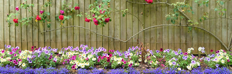 coldwell-banker-garden