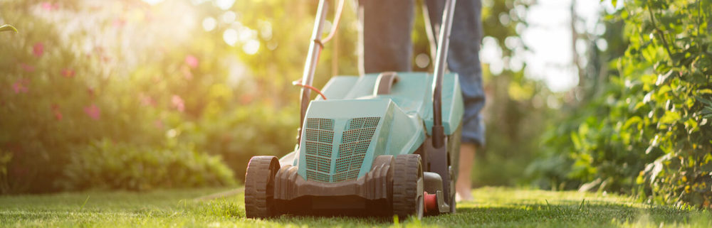 coldwell-banker-grass-fall-maintenance