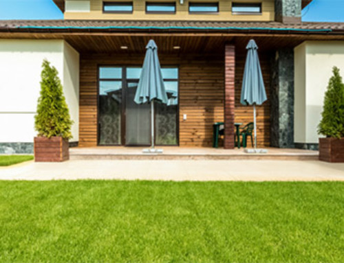 Your Guide to Eco-Friendly Lawn Care