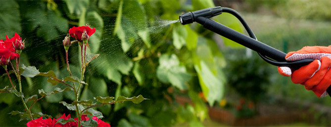 coldwell-banker-pesticides-diy