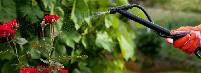coldwell-banker-pesticides-diy