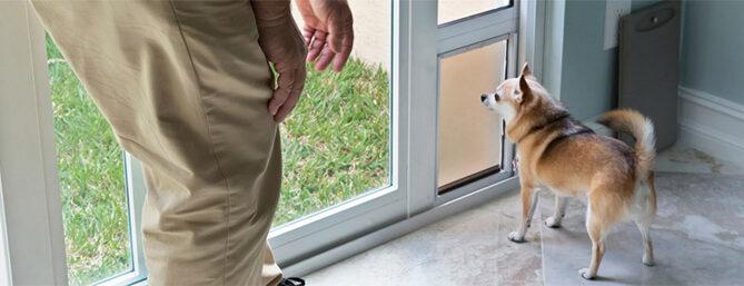 coldwell-banker-pet-door