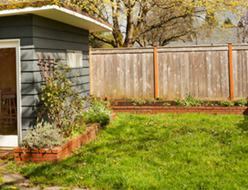 How to Build a Cheap Shed for Your Backyard