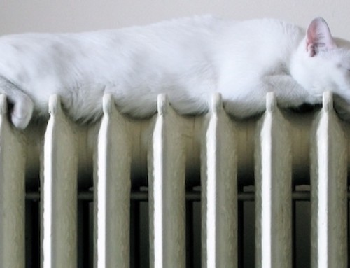Winter Energy Efficiency Tips